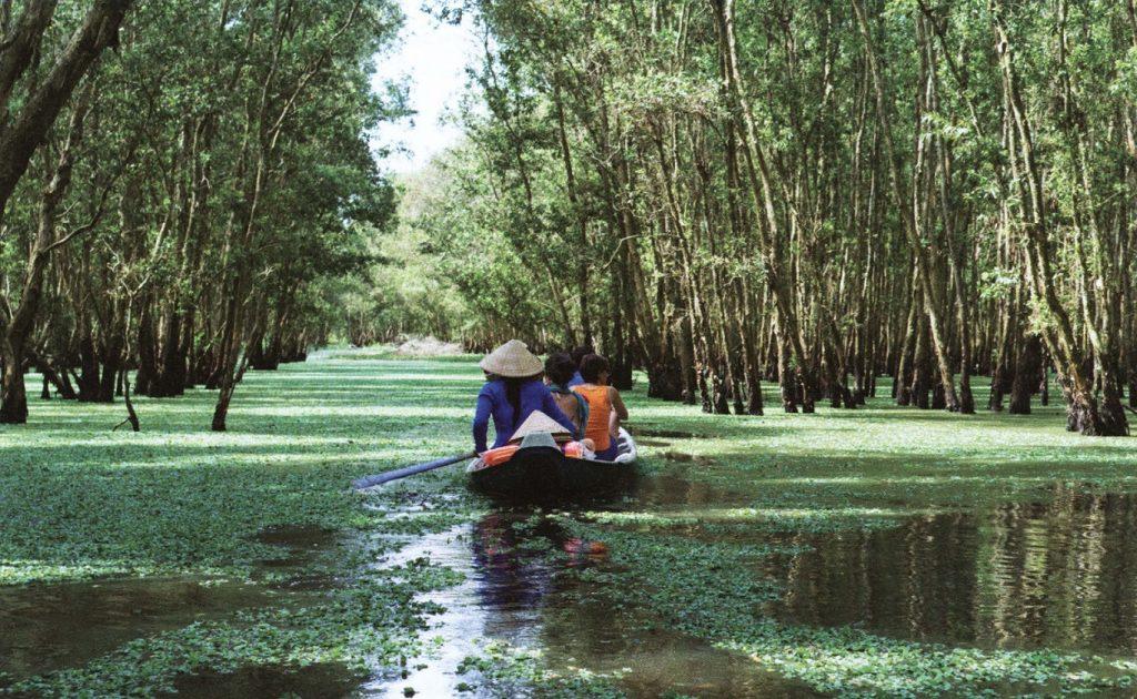 Вьетнам лес Тра Су