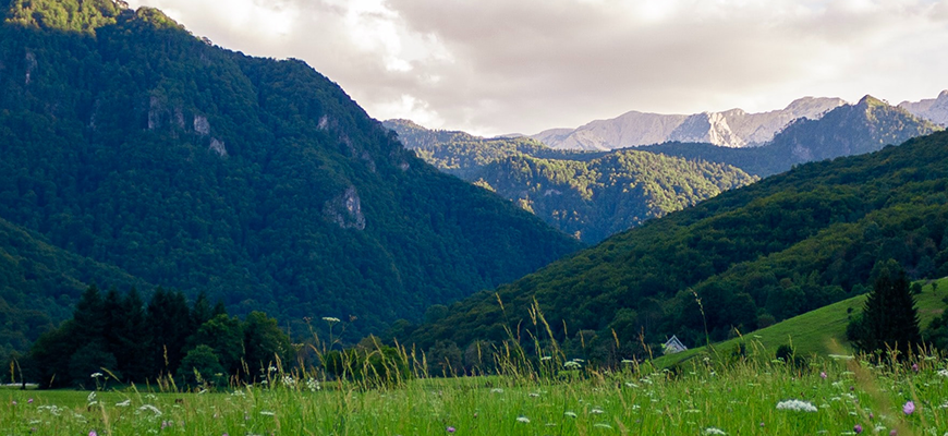 Сколько стоит отдых на Горном Алтае?
