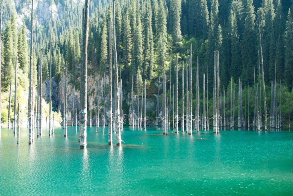 Озеро мертвых