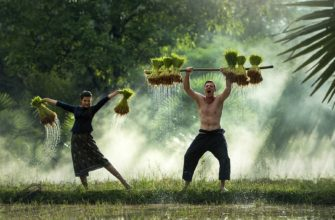 экономика Мьянмы